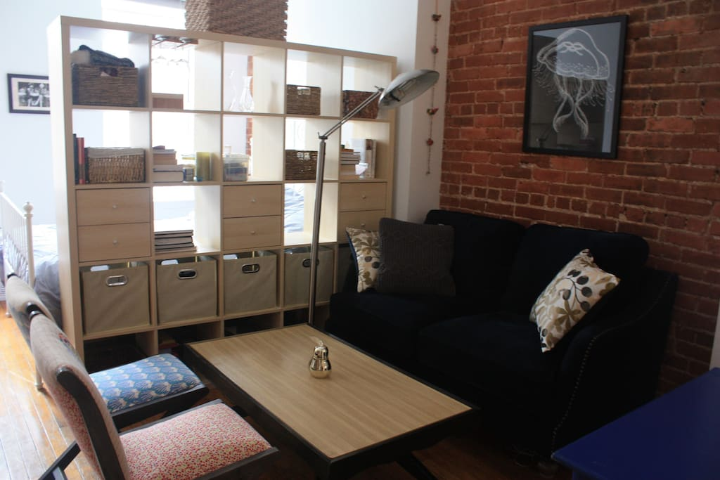 Exposed brick for a real New York feel. Open-back bookshelf allows sunlight to seep into the living area