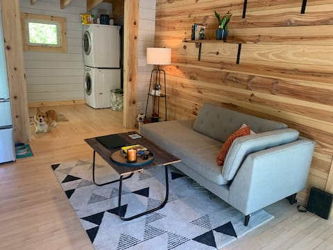 Modern Mountain Cabin Near DuPont State Forest