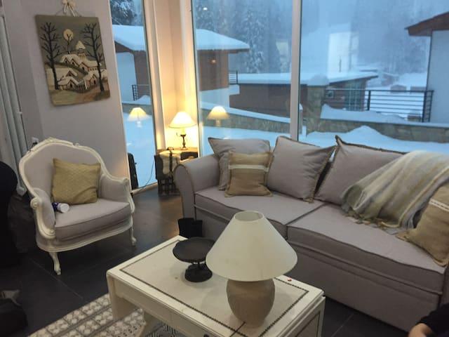 Beautiful house at ski resort Bakuriani - Bakuriani - House
