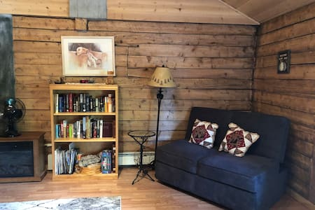 Quaint Studio Cabin in S. Anchorage w/WIFI