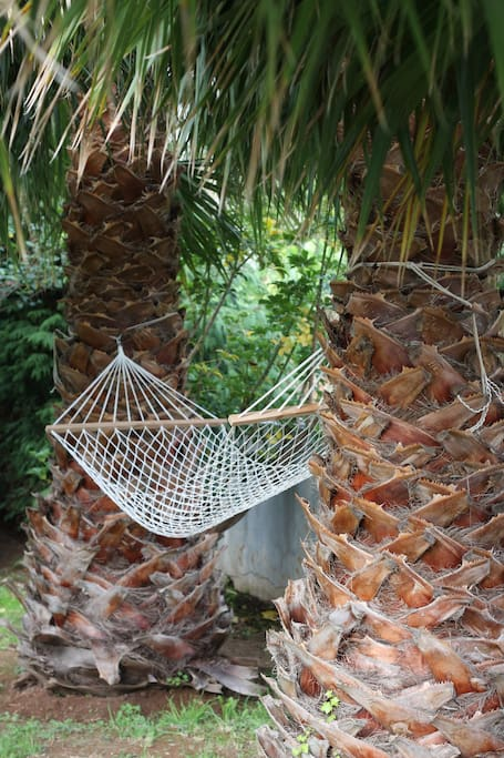 Relax with a book in a hammock