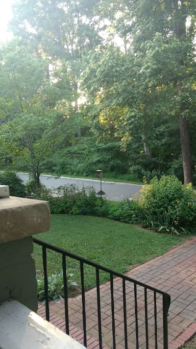 View of City Park from the Front Porch swing.