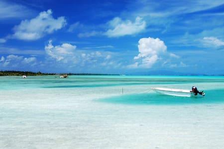 Beautiful condo 15 min away the beach & downtown. - Sarasota - Apartmen