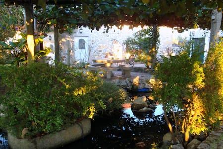Charming accomodation, pool, garden - Vila Praia de Âncora - Дом