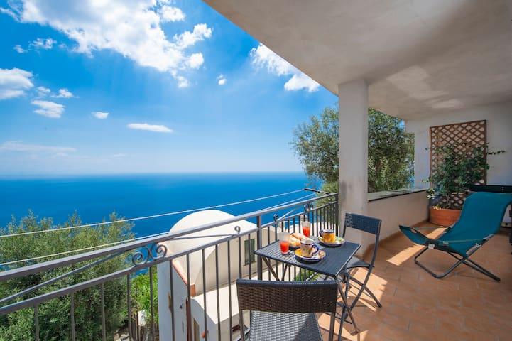 Amalfi Coast Bouganvillea