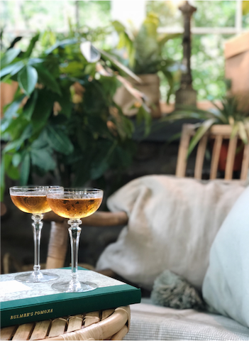 Enjoy some local apple cider among the greenery in the sunroom.