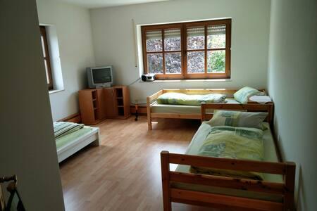 Lichtdurchflutete Wohnung - Neuendettelsau - Apartment