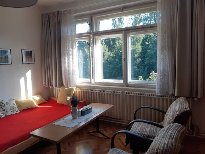 Spa apartment right in the center of Poděbrady.