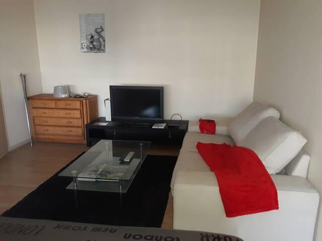 Appartement Gaillard