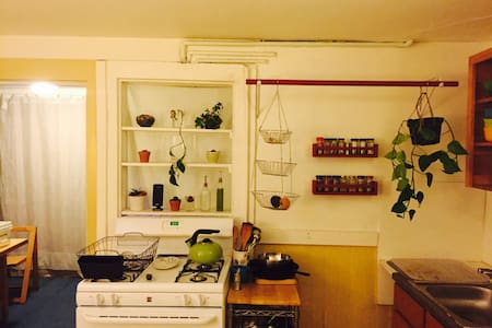 Inner Sunset Garden Apartment - San Francisco - Apartment