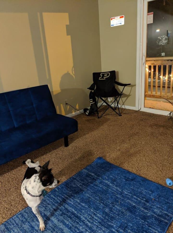 Pet friendly one bedroom apartment