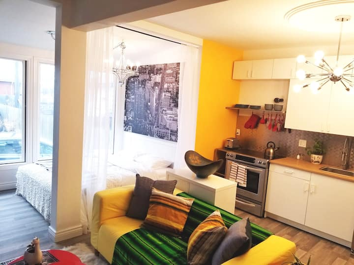 Downtown apt for monthly student or professional!