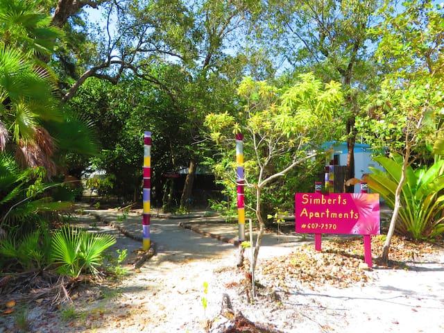 Jungle experience in modern setting in Maya Beach