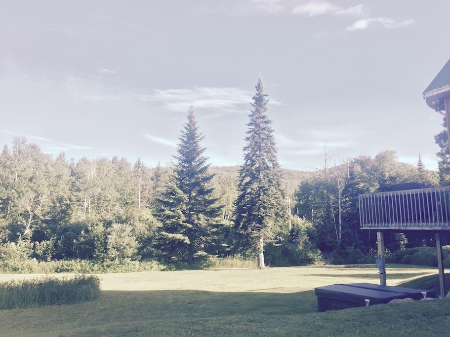 Photo terrain avant de la résidence en été