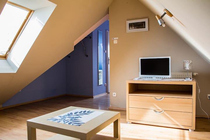 PODDASZE - Private Room - Gdańsk - Apartment