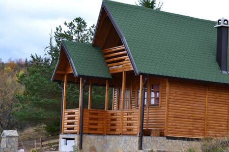 Romantic, cozy and quiet - Zaovine - House