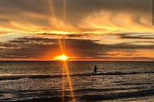 Sarasota's sunsets are amazing on our beaches!