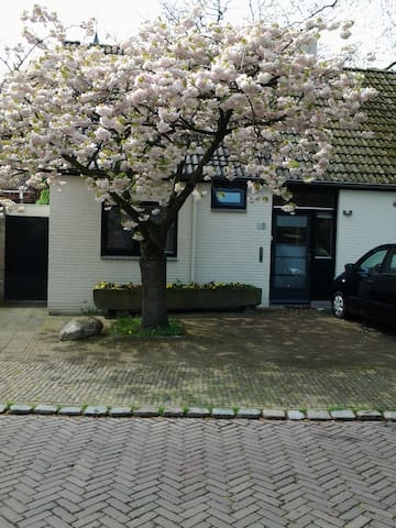 B&B On the Citywall of Oldenzaal - Oldenzaal - Apartamento