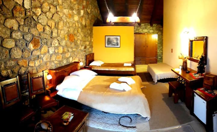 Specially decorated Triple Room with view
