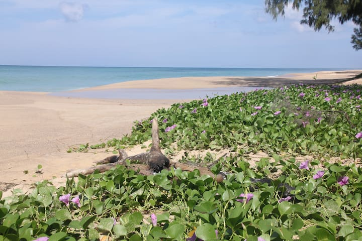 Small House by the Sea - Thai Mueang - บ้าน