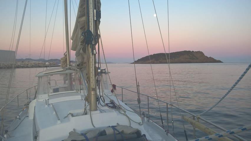 Janireva - Marseille - Boot