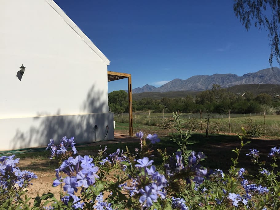 Side view of cottage showing view of Swartberg Mountains