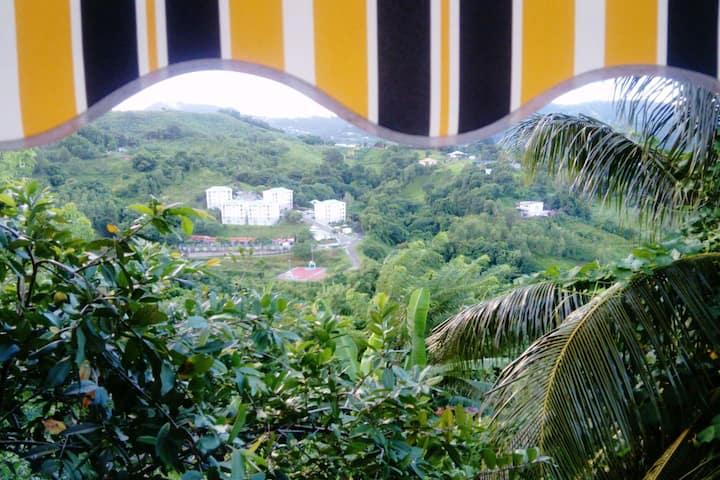 Hus med ett soverom i Saint-Esprit med fantastisk fjellutsikt og innredet hage