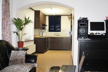 Gemütlich eingerichtete 2,5 Zimmer Studio - Altstätten - Wohnung