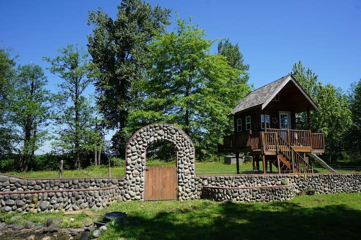 Mt. Peak Bed & Breakfast (Tree House)