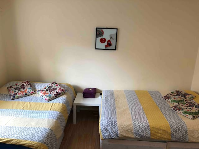 3. DBL BEDROOM IN  LONDON, NEAR WESTMINSTER BRIDGE