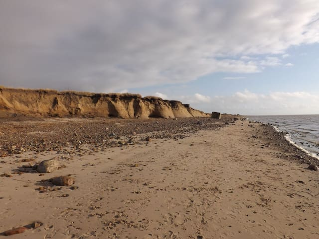 Nordfriesland Sylt Röm Nordsee Hundeurlaub
