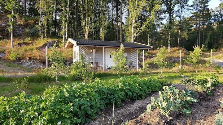 Off-grid hytte på Herlige Hope