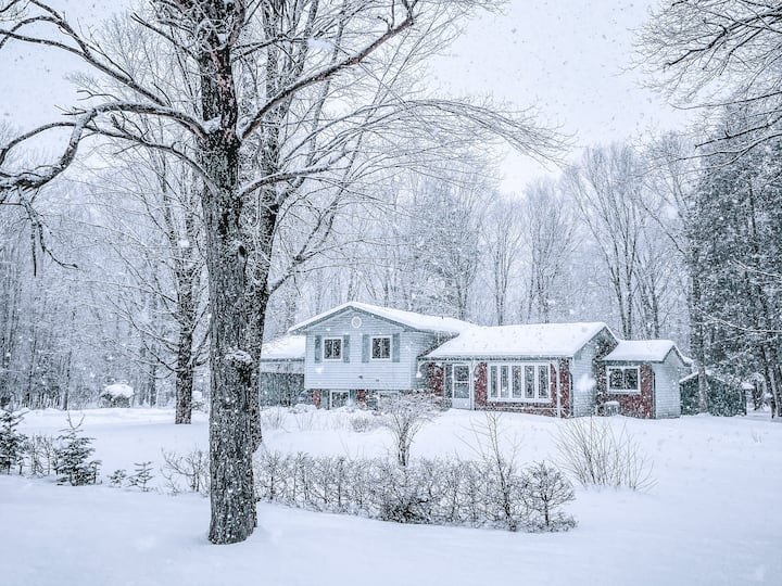 ★ The 7 ★ Updated Cottage in the Woods, Muskoka