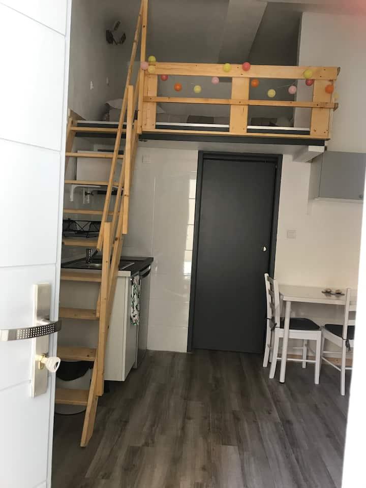 Studio avec chambre en mezzanine, centre Ecusson