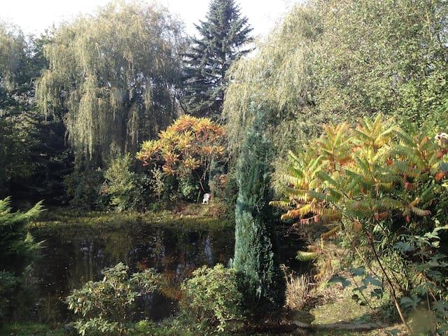 Herrlich friedvoll an einem Teich - Mettmann - Ev