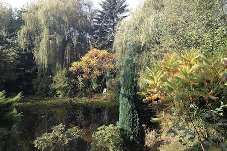 Herrlich friedvoll an einem Teich - Mettmann