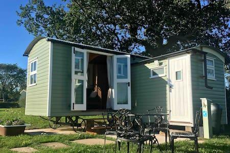 The Daisy Shepherds Hut, Ashbourne