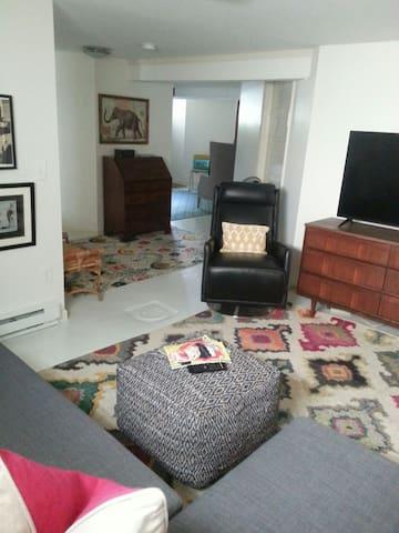 "Queen sleep sofa and 48"" smart tv in living space."