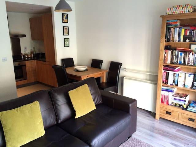 Modern open plan apartment - Dublin - Apartmen