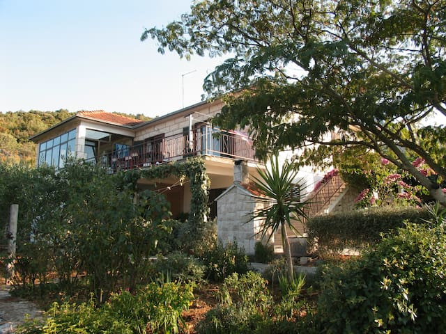 Apartman Maslina - Mirjana - Kneze - Apartment