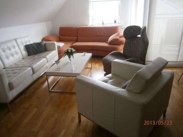 Beautiful, 3bdr apt - Reykjavik - Apartment