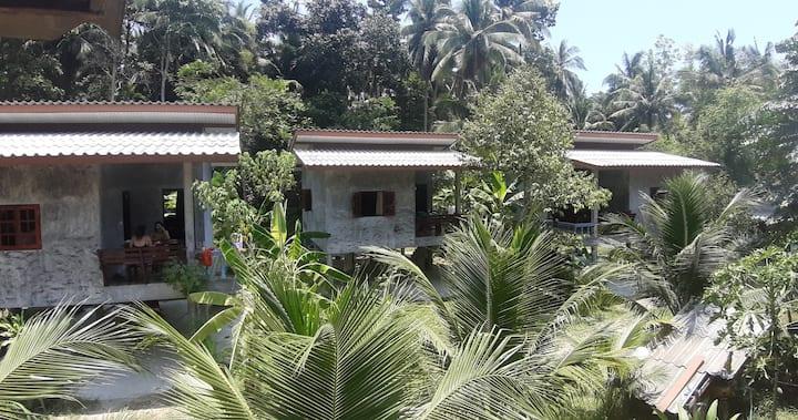 Jungle Villas Wat Pho