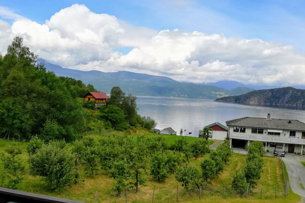 Panorama view from the terrasse of the Hardangerfjord.