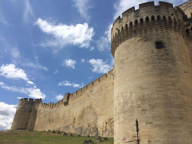 Tourisme à proximité - Villeneuve-lès-Avignon - Le Fort saint-André