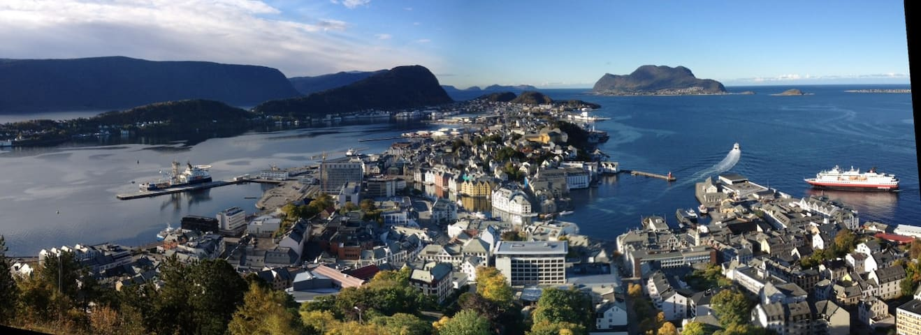 A private flat in lovely Ålesund! - Alesund - Apartmen