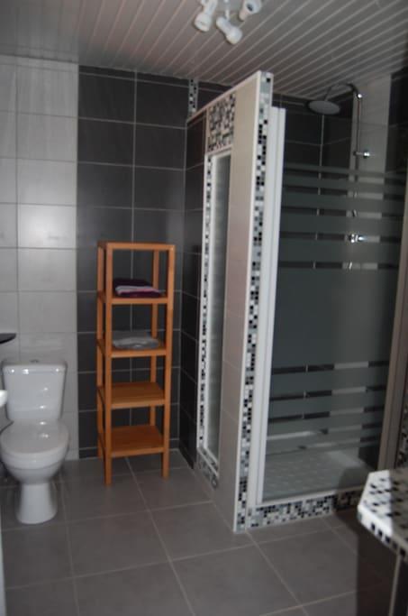 Salle de bain avec douche, WC et meuble vasque
