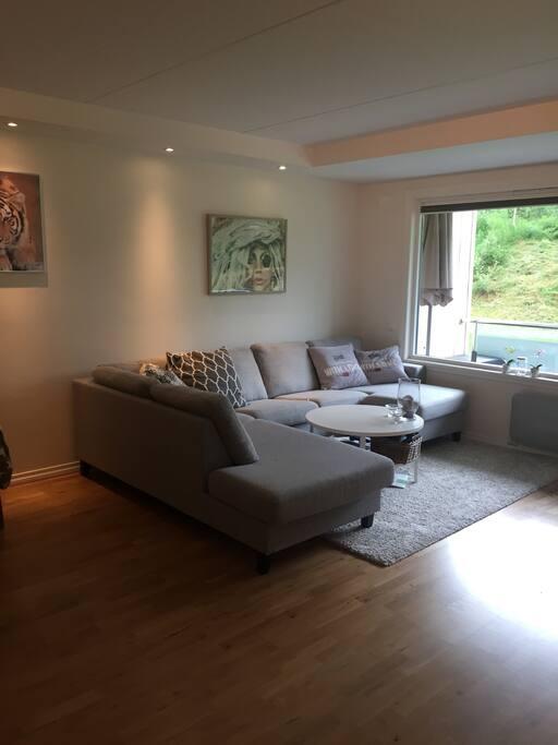 Romslig stue med stor sofa.