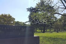Flagstaff Gardens is just across the road