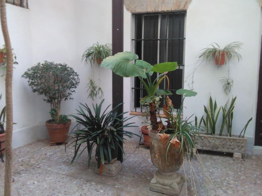 Inner patio