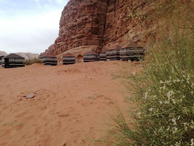 Wadirum desert tours camp3